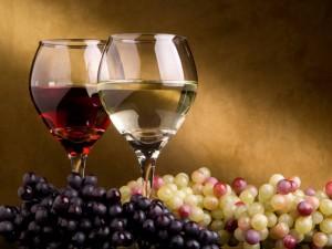 Degustacion Vinos by Vlc&Abt